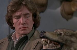 Dewey nemá s vlky dobré zkušenosti.