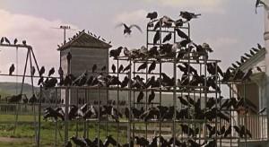 Jedna z přízračných scén, která je pro Ptáky typická.