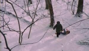 Sníh je dobré prostředí pro horor. Ne vždy.