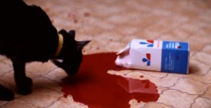 Tady je i kočka ujetá na krev.