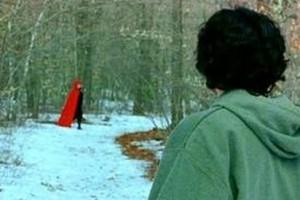 Červená Karkulka prochází lesem.