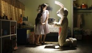 A zase jeden králík.