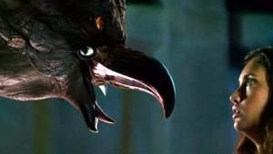 Konverzace z očí do zobáku.