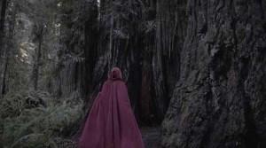 Karkulka jde do lesa.
