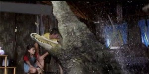 A ještě jednou krokodýl.