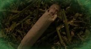 Divný joint.