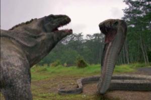 Varan vs kobra.