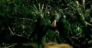 Hele, strom.