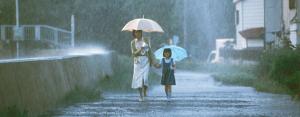 Prší krásně...