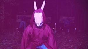 Divný králík.
