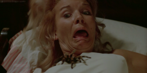 A jéje, pavouček.